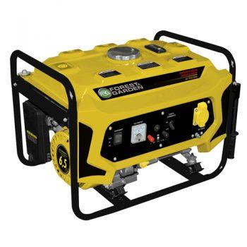 Generadores a Gasolina | GG7335/2/50HZ Forest&Garden